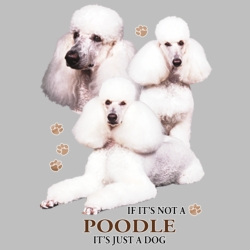T Shirts Wholesale Distributor - Pet Poodle T Shirts Wholesale Suppliers in Bulk - 21390HD4