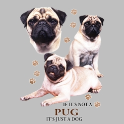 T Shirts Gildan Dog T Shirts for People Clothing Pet Pug T Shirts Wholesale Suppliers in Bulk - 21391HD4