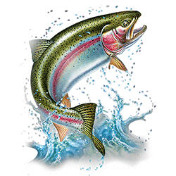 Wholesale T Shirts - Bulk T Shirts - Men's Clothing Wholesale Fishing Rainbow Trout Distributors and Suppliers in the USA - MSC Distributors