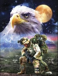 T Shirts Gildan Military Bald Eagle and American Flag T Shirts - MSC Distributors