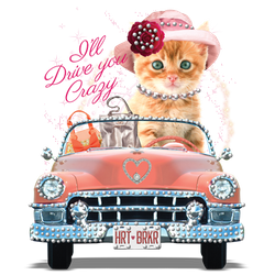 Wholesale Women's Funny Cat Car T Shirts - 18201HLR4