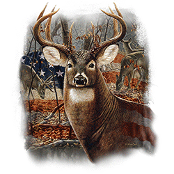 Animal Wildlife T Shirts Wholesale Deer T-Shirts - MSC Distributors