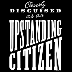 Upstanding Citizen Premium Best Buy Resale Shirts Funny Graphic Tees Women's Wholesale - 22357EL4