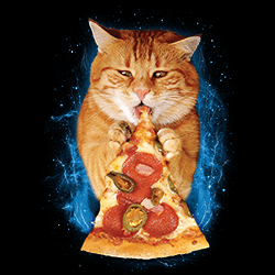 Wholesale Graphic Cat Pizza Tees for Women T-Shirts T Shirts, Military Hats and Caps Bulk Suppliers - 21977D2