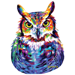 Animal Wildlife T Shirts Wholesale Owl T-Shirts - MSC Distributors