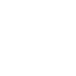 Southern Attitude Premium Best Buy Resale Shirts Funny Graphic Tees Women's Wholesale - 19248EL2