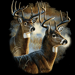 Animal Wildlife T Shirts Wholesale Merchandise - Deer T Shirts - MSC Distributors