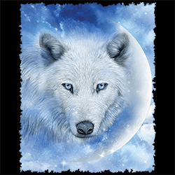 Wholesale Wildlife Animal Wolf Clothing Apparel Officially Licensed T Shirts Bulk Cheap Suppliers - MSC Distributors