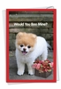 Hysterical Valentine's Day Card From NobleWorksInc.com - Boo My Valentine - Flower Basket