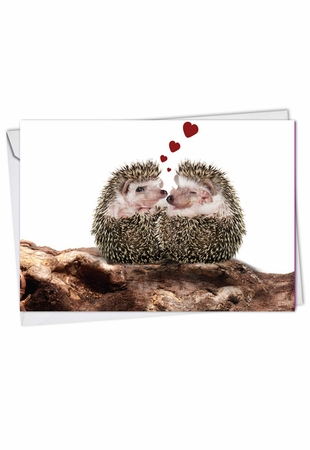 Beautiful Valentine's Day Card From NobleWorksInc.com - Cards From The Hedge