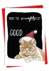 Funny Merry Christmas Card From NobleWorksInc.com - Cat Naughty List
