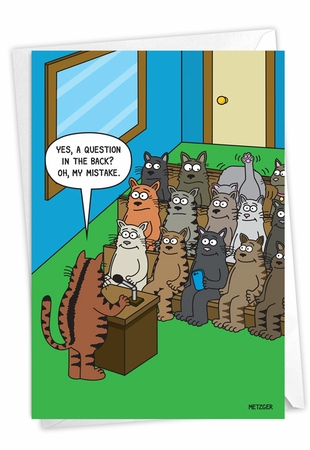 Hilarious Birthday Card From NobleWorksInc.com - Cat Question