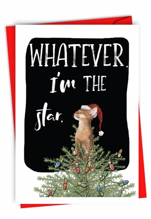 Funny Merry Christmas Card From NobleWorksInc.com - Cat Star
