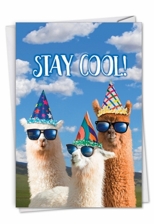 Hysterical Birthday Card From NobleWorksInc.com - Cool Llamas - Partygoers