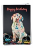 Creative Birthday Card From NobleWorksInc.com - Dirty Dogs - Accident