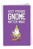 Creative Birthday Card From NobleWorksInc.com - Friendly Garden Gnomes - Besties