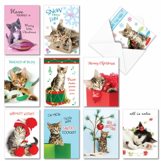Funny Merry Christmas Assorted Cards From NobleWorksInc.com - Meowy Holidays