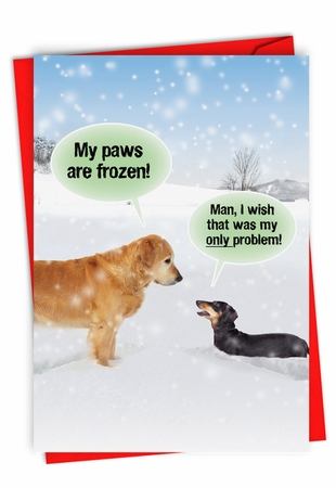 Humorous Blank Card From NobleWorksInc.com - My Paws Are Frozen
