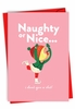 Humorous Merry Christmas Card From NobleWorksInc.com - Naughty or Nice