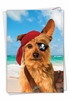 Hysterical Birthday Card From NobleWorksInc.com - Pirate Dog