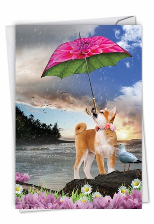 Stylish Birthday Card From NobleWorksInc.com - Raining Dogs - Blue Skies