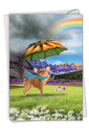Stylish All Occasions Card From NobleWorksInc.com - Raining Dogs