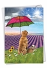 Creative Get Well Card From NobleWorksInc.com - Raining Dogs - Sunny Days