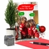Humorous Merry Christmas Card From NobleWorksInc.com - Watering The Tree
