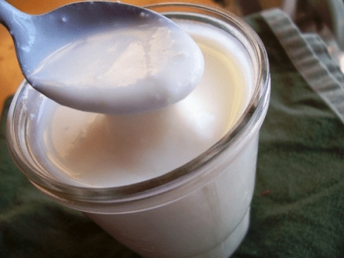 Fil Mjolk Dairy Yogurt - Organic Grown