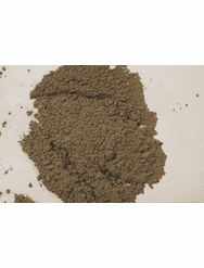 Koji Spores, Tempeh, Natto, & Rice Wine