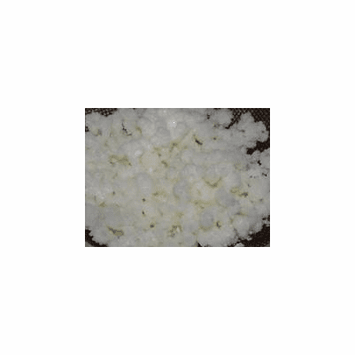 Real Kefir Grains Live Starter, Bulk 1 Cup, Organic Grown Kefir