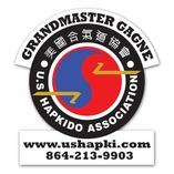 Martial Art Car Magnets