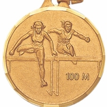 TRACK 100 METER HURDLE FEMALE - MULTIPLE COLORS