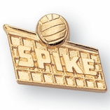 VOLLEYBALL/SPIKE CHENILLE PIN