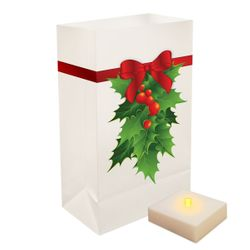 Holly Bags - 6ct Light w/Timer