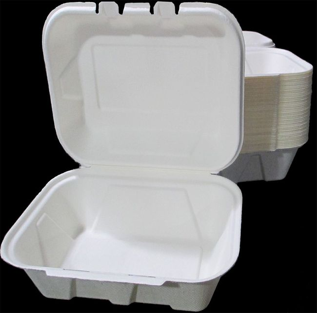 1-Compartment Takeout Food Container - Bagasse