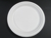 9in Bagasse Paper Plates
