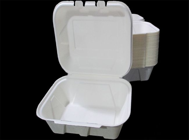 Hamburger Sized Bagasse Takeout Container