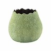 Cartago Planter in Green