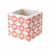 Cement Triangles Planter in Orange & White