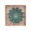 Green Star Succulent Wall Decor in Distressed Blue