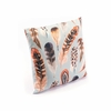 Plumas One Pillow in Multicolor