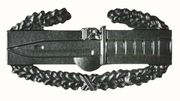 Army Combat Action Badge
