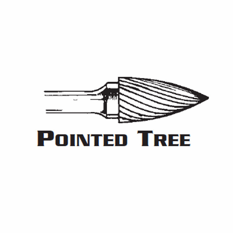 Pointed Tree