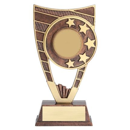 9 Inch Antiqued Gold Resin Star Trophy-Takes 2 Inch Custom Insert