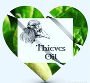 DOI Thieves Oil blend.