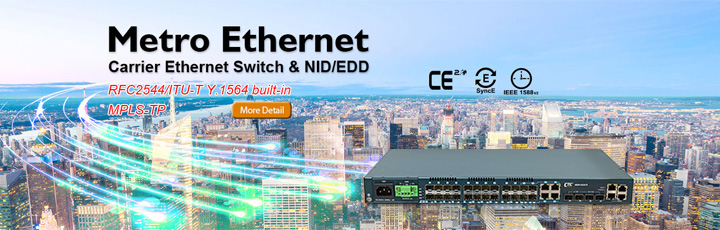 Metro Ethernet Switch