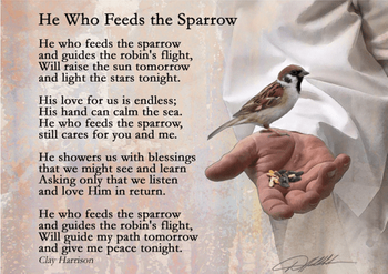 He Who Feeds The Sparrow by Danny Hahlbohm - Unframed Christian Art