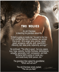 Two Wolves by Danny Hahlbohm - Unframed Christian Art