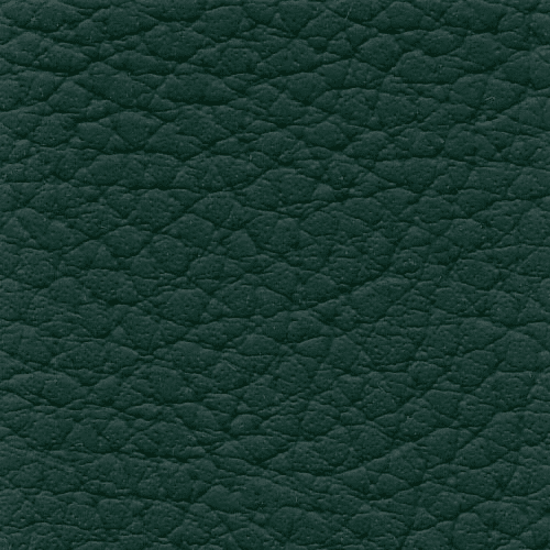 Xtreme Forest Green